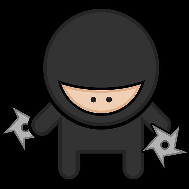The Ninja CTO